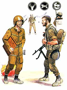 Osprey Men-at-Arms 127 - The Israeli Army in the Middle East Wars 1948–73
