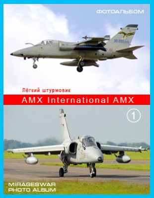 Лёгкий штурмовик - AMX International AMX (1 часть)