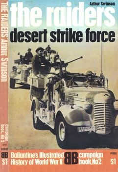 The Raiders: Desert Strike Force