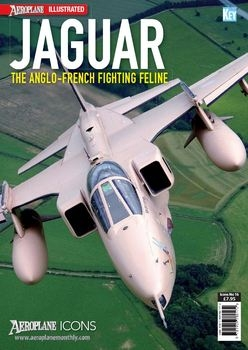 Jaguar: The Anglo-French Fighting Feline