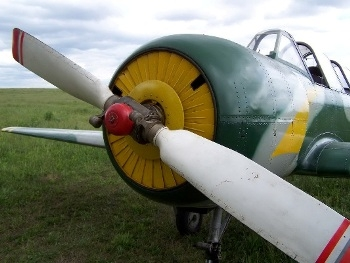 Yak-52 Walk Around