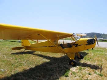 Piper J-3C Cub Walk Around